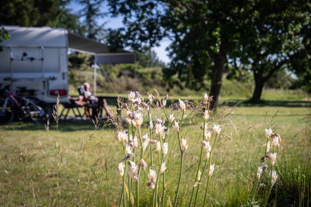 camping camping-car