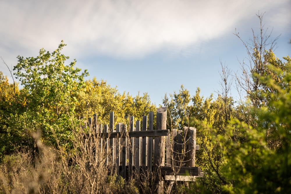 sentier aménagé : observatoire
